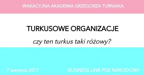 Wakacyjna Akademia Grzegorza Turniaka - Turkusowe Organizacje