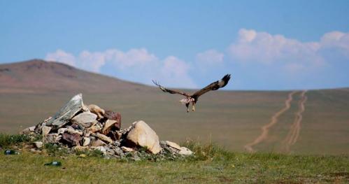 Mongolia. Przepodróż poza strefę komfortu.
