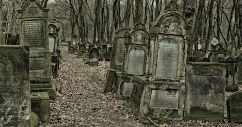 """11.03.2018 - 10:15  """"Moje miasto murem podzielone... - spacer po Cmentarzu Żydowskim""""  [Spacer]"""