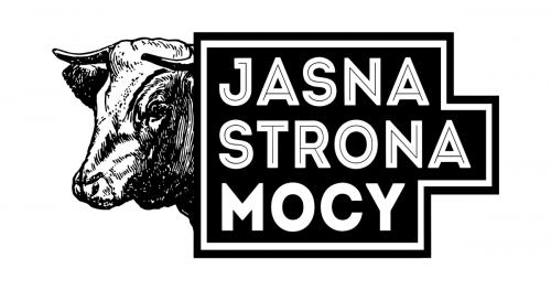 Jasna Strona Mocy Fest w Olsztynie!