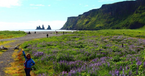 Islandia - kraina fioletem malowana
