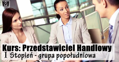 Kurs: Przedstawiciel Handlowy I Stopień - grupa popołudniowa