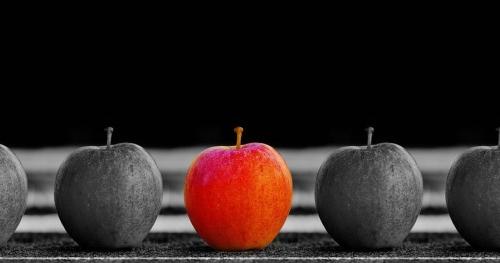 Executive Lean Management - jak zbudować trwałą kulturę w swojej firmie, w oparciu o filozofię Lean.