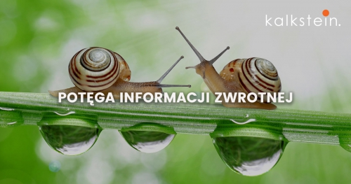 Potęga informacji zwrotnej - szkolenie otwarte