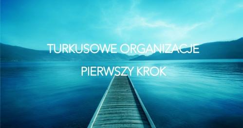 Turkusowe Organizacje - Pierwszy Krok