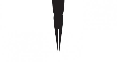 Konferencja Międzynarodowa Szary Kruk