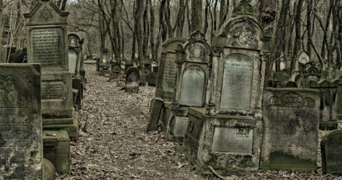 """15.09.2019 - 10:00  """"Moje miasto murem podzielone... - spacer po Cmentarzu Żydowskim""""  [Spacer]"""