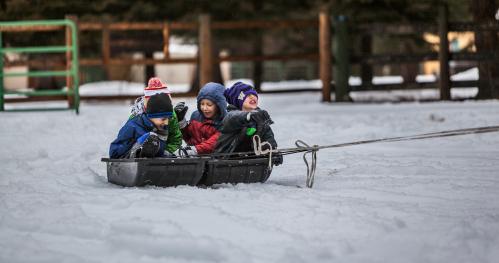Zimowy obóz dla dzieci w agroturystyce Kurnik Polski