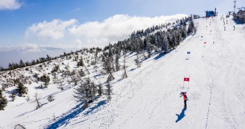 Adaptive Snow Camp 2020