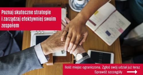 Zarządzanie zespołem: skuteczne techniki i strategie budowania efektywnych zespołów - Toruń
