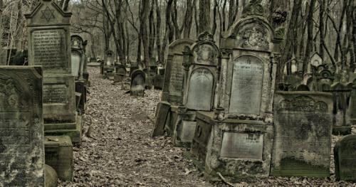 01.03.2020 - 11:00 - Do ulicy Smętnej - spacer po Cmentarzu Żydowskim  [Spacer]