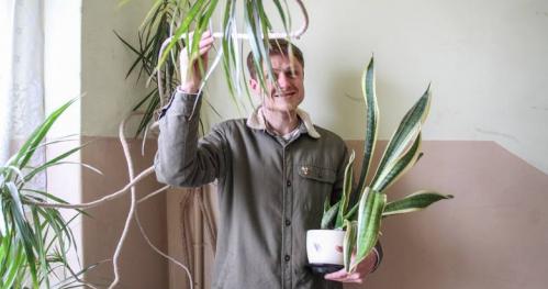 Rośliny wspólne - rośliny, które łączą ludzi