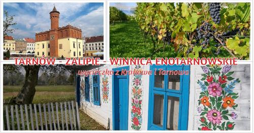 TARNÓW - ZALIPIE - WINNICA ENOTARNOWSKIE: wycieczki z Krakowa i Tarnowa