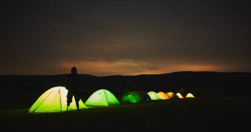Summer Forest Camp