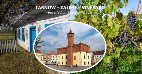 TARNOW - ZALIPIE - VINEYARD   bus trip from Krakow & Tarnow
