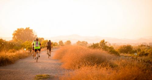 Adaptive Bike Challenge 2020