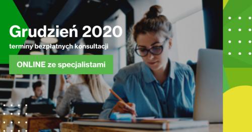 Darmowe Konsultacje Grudzień - Dąbrowski Inkubator Przedsiębiorczości