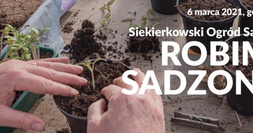 Siekierkowski Ogród Sąsiedzki: ROBIMY SADZONKI