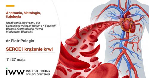 Serce i krążenie krwi - Anatomia, histologia, fizjologia, dr Piotr Pałagin
