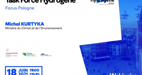 HYDROGEN PERSPECTIVES IN POLAND
