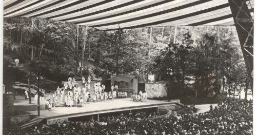 Spacer historyczny - Opera Leśna