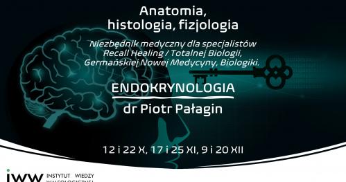 Endokrynologia - Anatomia, histologia, fizjologia, dr Piotr Pałagin